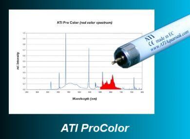 ATI Pro Color 80W