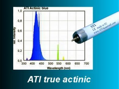 ATI True Actinic 80W