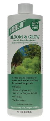 Bloom & Grow Iron 473ml